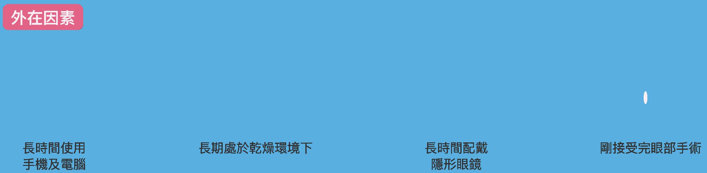 services_P6-03